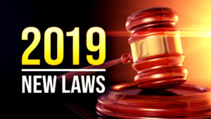 Introduction of New Laws in New York