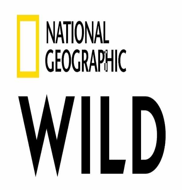 Nat Geo Wild Schedule