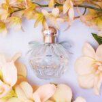 The Harmonist, A Maison de Parfums Launched by Lola Karimova Tillyaeva
